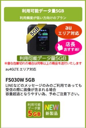 FS030W_5GB