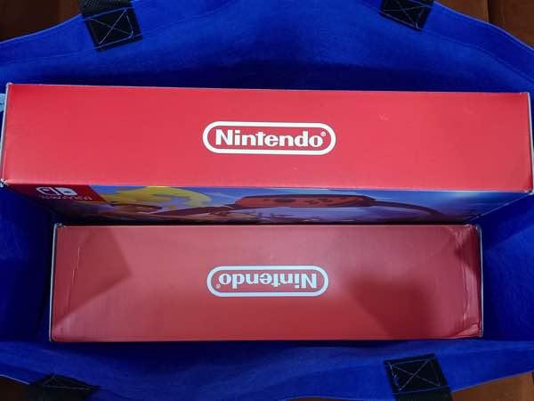 bought-nintendo-switch-08