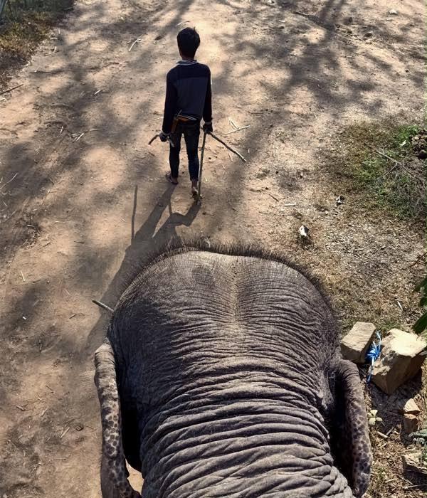 laos-luang-prabang-Dec-2019-107