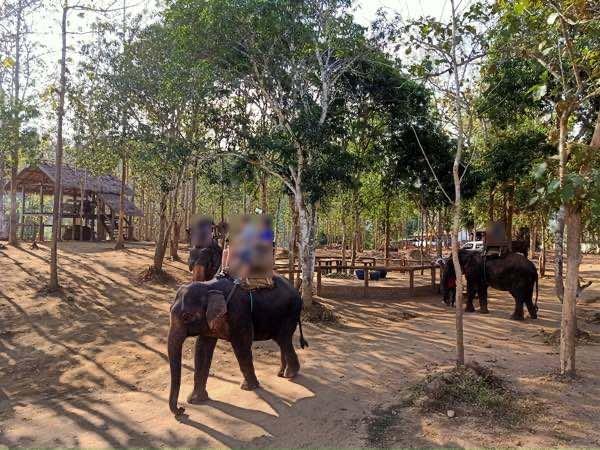 laos-luang-prabang-Dec-2019-108