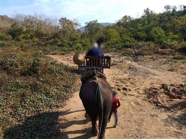 laos-luang-prabang-Dec-2019-110