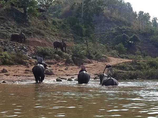 laos-luang-prabang-Dec-2019-141