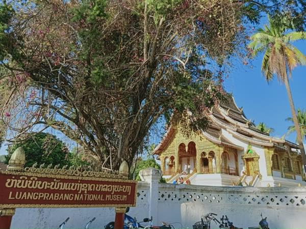 laos-luang-prabang-Dec-2019-22