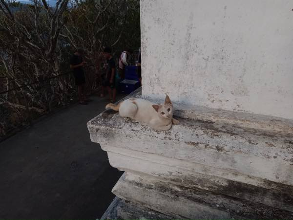 laos-luang-prabang-Dec-2019-63